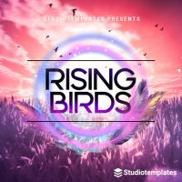 Rising Birds