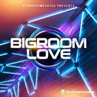 Bigroom Love